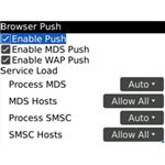 Blackberry Browser Push enabled settings