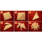 Origami Star Shape/Flower by Oliver Merkel/Wikimedia Commons (GNU license)