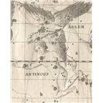 Constellation Aquila The Eagle