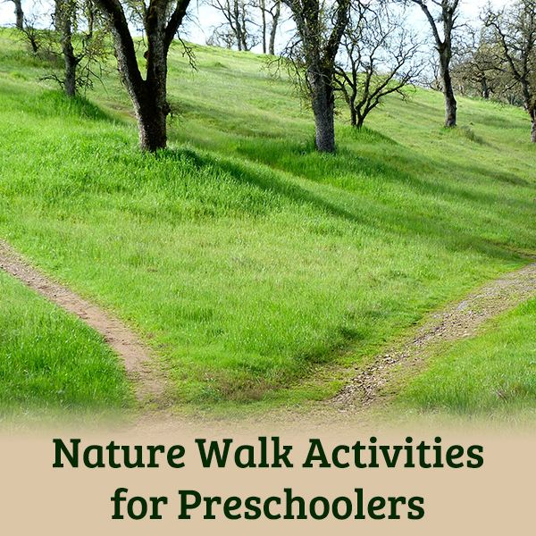 nature walk activities for preschoolers. Black Bedroom Furniture Sets. Home Design Ideas