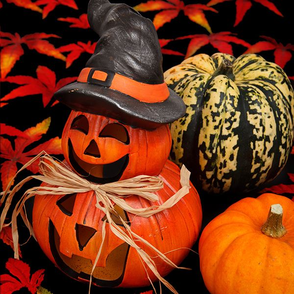 Thrilling Halloween Lesson Plans and Ideas That Will Give Your Students a Treat