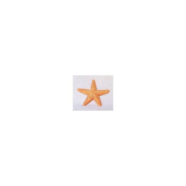 Preschool Starfish (Sea Star) Theme: Crafts and Activities for Preschoolers