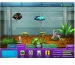 Business Simulation Games - FishCo
