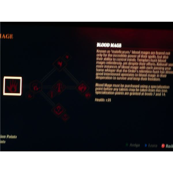 Dragon Age 2 Mage Specialization Guide: The Blood Mage spell tree.