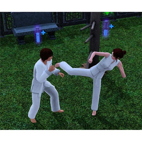 The Sims 3 Sparring