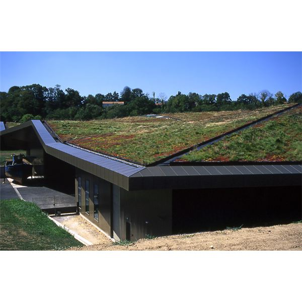Benefits Of Green Roofs What Is The Purpose Of Green Roof