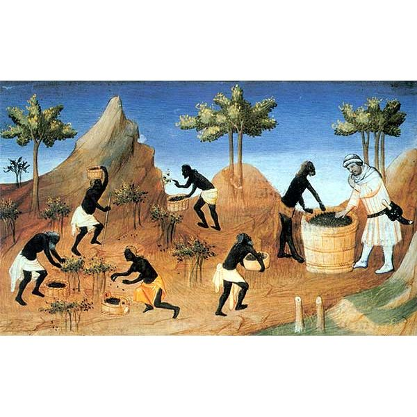 Harvesting of Pepper in Coilum in southern India-14TH CENTURY Painting