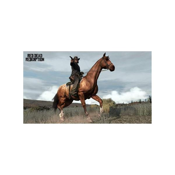 Red Dead Redemption Horseplay
