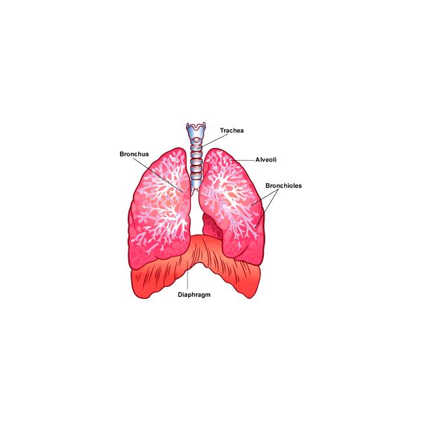 Different Types of Lung Cancer Treatments for Shortness of Breath