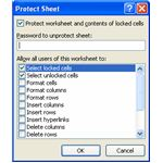 Fig 5 - Protect Sheet Dialog
