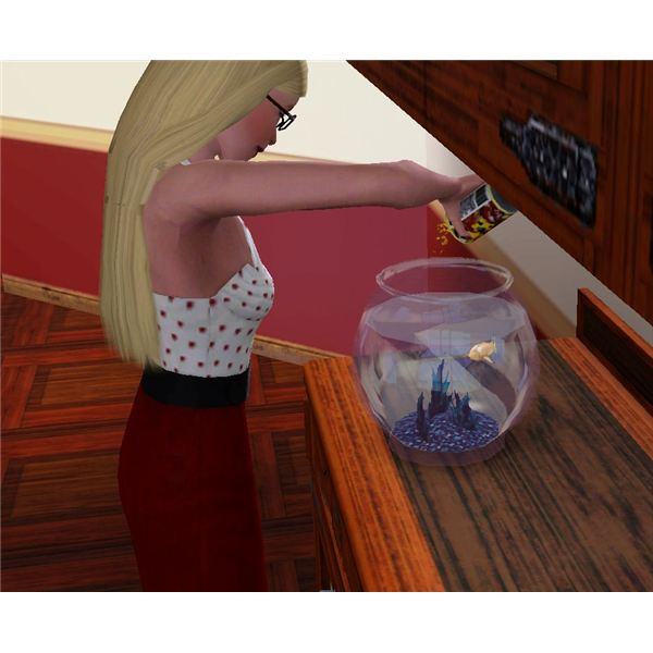 The Sims 3 Pet Fish