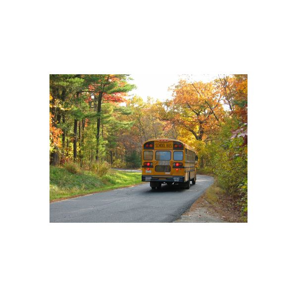 Fleet-Management-School-bus