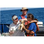 Miriam Goldstein, Jesse Powell, and Chelsea Rochman rescue a toy stuffed dog from a ghost net.