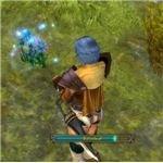 Herbalism screenshot from in game, Runes of Magic