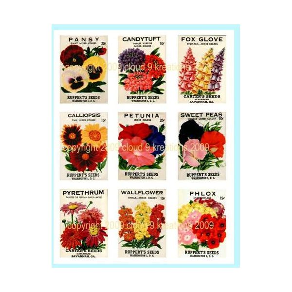 Where to Find Vintage Seed Packet Art for Your DTP Projects