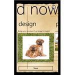 Design Your Own PostcardNow on Windows Phone