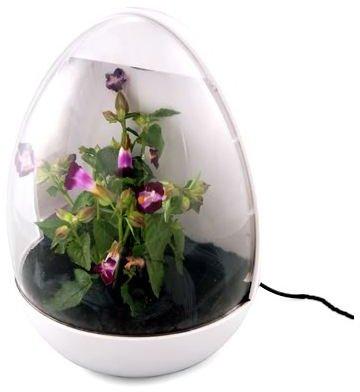USB Office Gadgets: Greenhouse