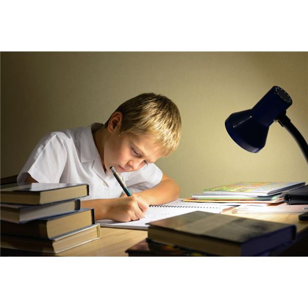 Top Study Tips for Middle School Students