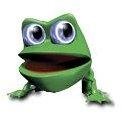Eyeball Frog