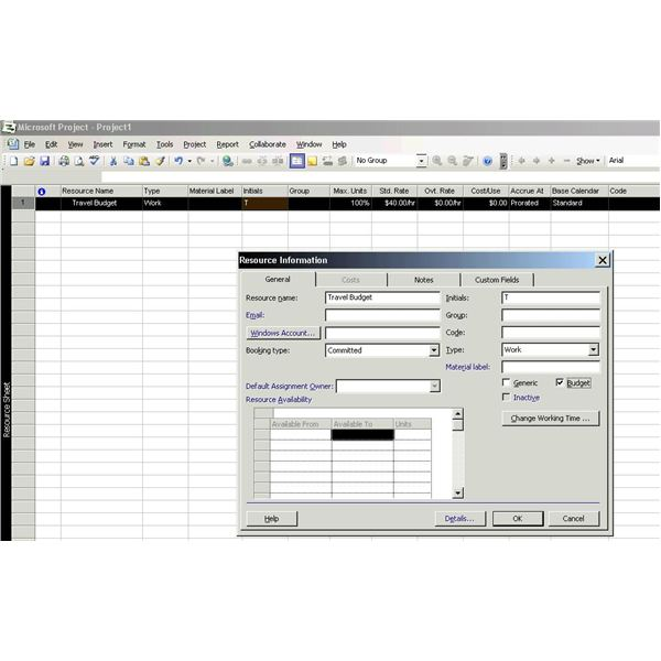 How to Create a Budget in Microsoft Office Project