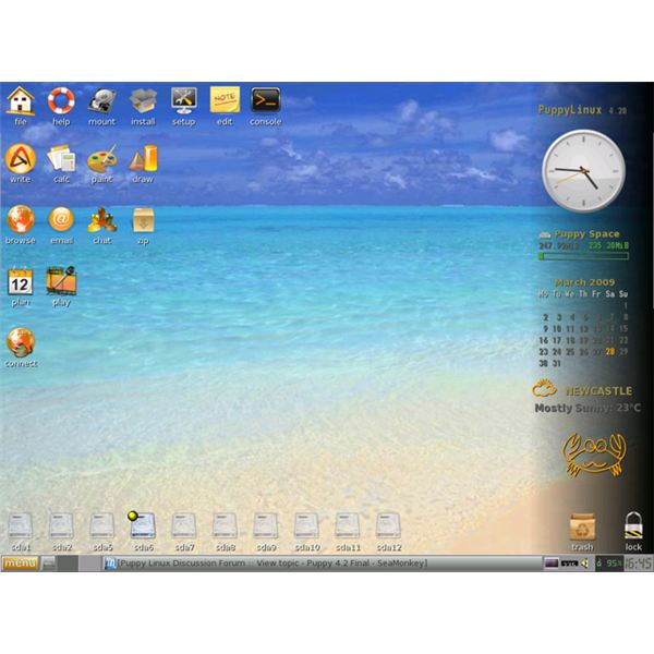 Puppy Linux 4.2 (codename