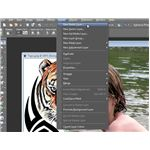 Create New Raster Layer