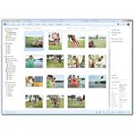 Windows Live Photo Gallery - Click and Upload