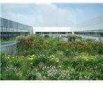 roof garden c. Vinzcha, Flickr CC photo 3657469876