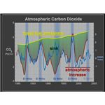 Fossil Fuel Emission & Atmospheric Carbon Increase