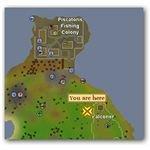 Location of Razor Backed Kebbit in Runescape