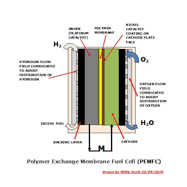 Polymer Exchange Membrane Fuel Cell