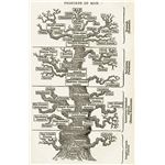 Ernst Haeckel's Phylogeny Tree of Life,
