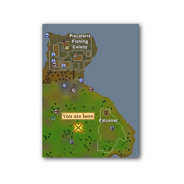 Location of Copper Longtail in Runescape