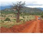 African Safari Route