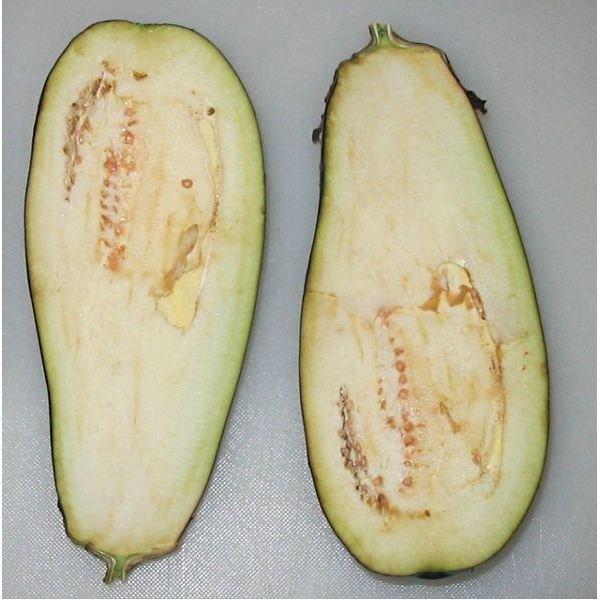 Eggplant Sliced