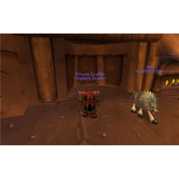 Best World of Warcraft Solo Classes: The Hunter