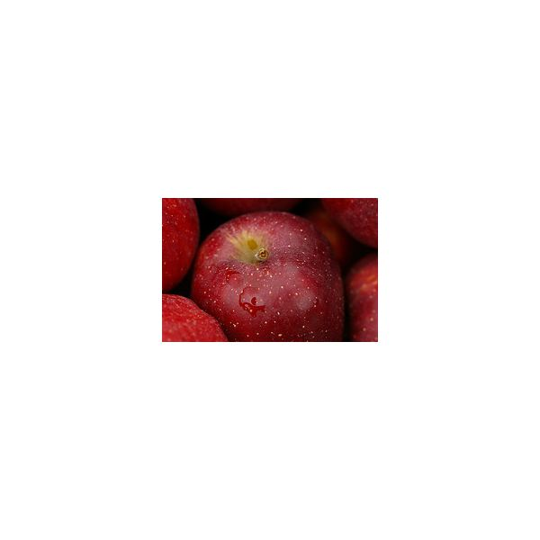 red delicious apple by fortinbras