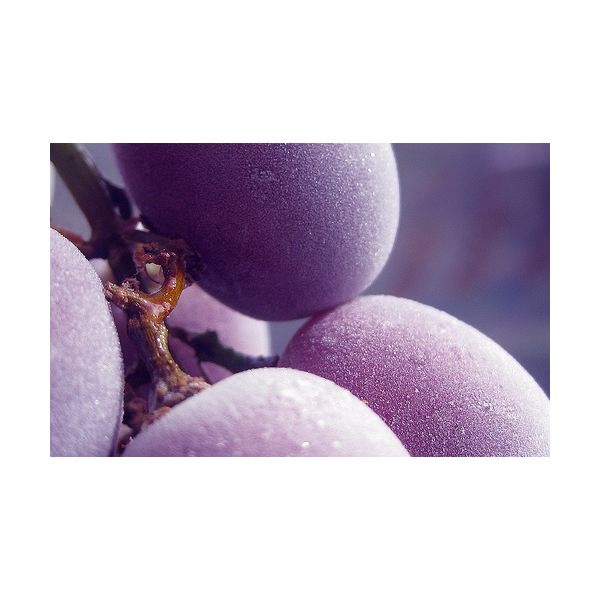 Frozen Grapes as a Snack: Nutritional Benefits, Good for Dieters, & Lower Sugar Alternatives