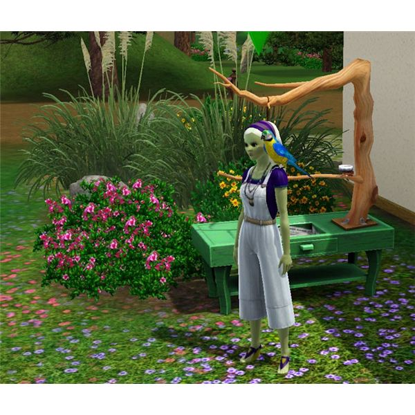 The Sims 3 bird on Sim