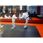 Tae Kwon Do Belt Colors - Photo by Flickr user Melissa Clark