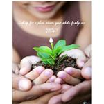 Church Postcard Templates: Grow