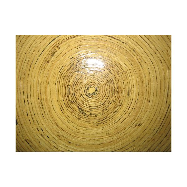 bamboo plates Disposable ...  sc 1 st  Bright Hub : recycled disposable plates - pezcame.com