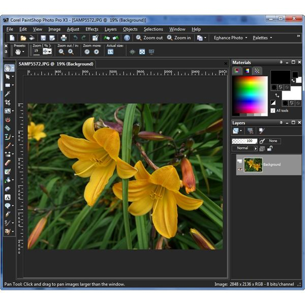 Corel Painter X3 extended price
