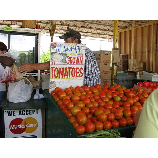 Does it Make Environmental Sense to be a Locavore? The Truth About Eating Local