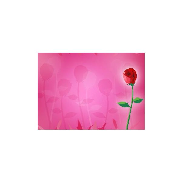 rose-backgrounds-faded-rose-background
