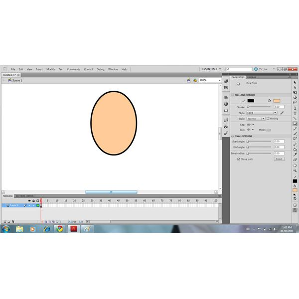 Use The Oval Tool To Draw The Head