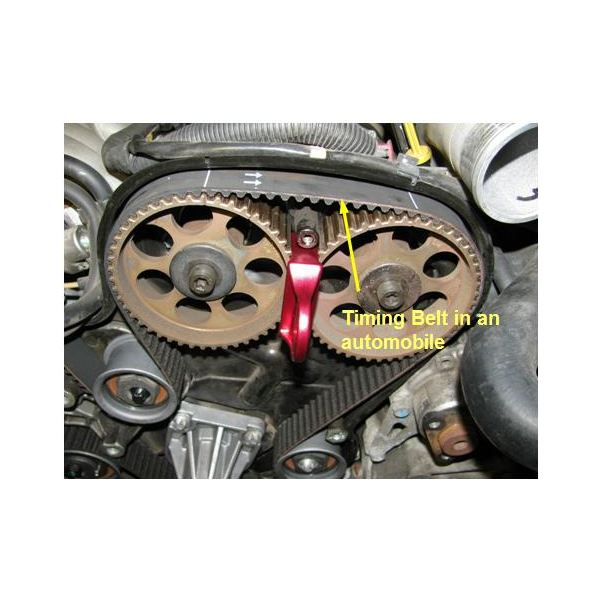 Timing Belt in an automobile