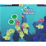 Feed Fish in Fishville
