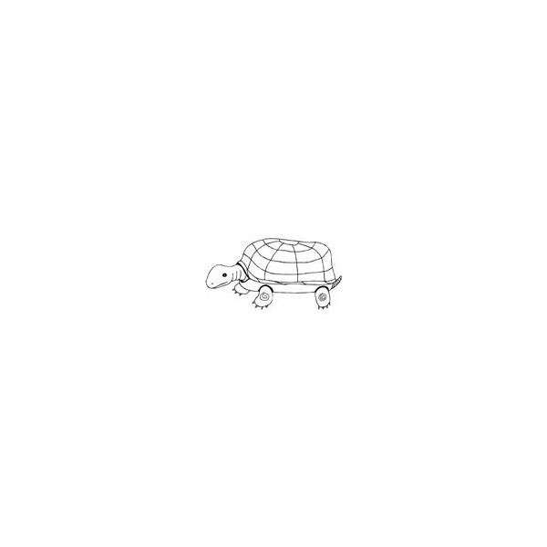 Turtle Drawing 2