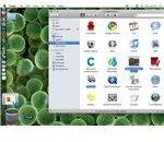 Removing Microsoft Office: Mac